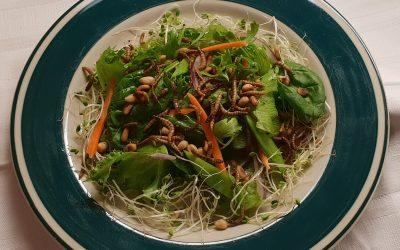 Pähkinäinen vihreä salaatti